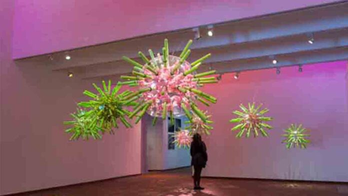 Exposición Beehave en la Fundación Joan Miró