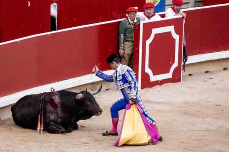 La brutalidad impactante de los festivales taurinos