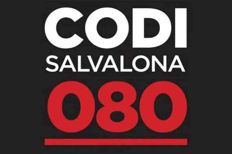 La plataforma Salvalona espera que el gobierno mueva ficha