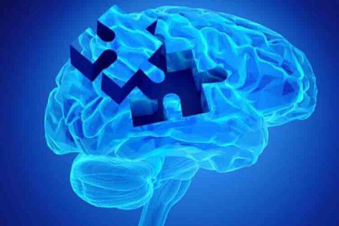 Se descubren dos nuevos genes implicados en el Alzheimer