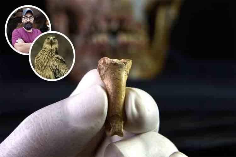 último collar hecho por los Neandertales