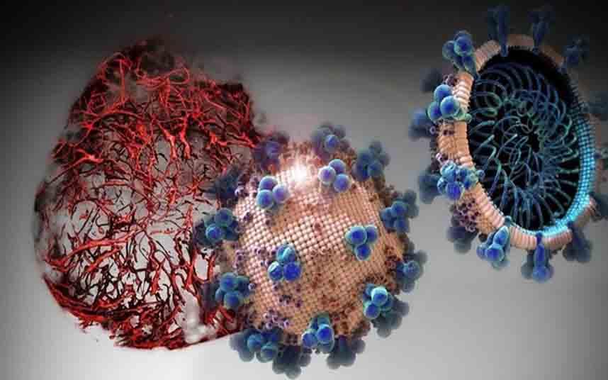 Bioingenieros encuentran un medicamento que bloquea los efectos del COVID-19
