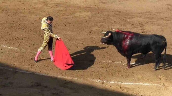 Alcalá de Henares exige a Ayuso que actúe ante las corridas de toros previstas para el fin de semana
