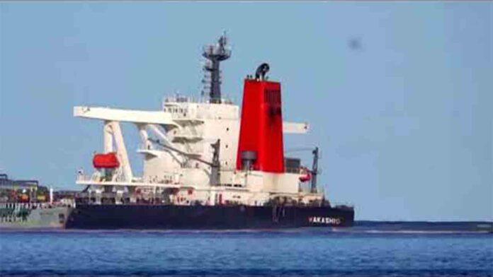 Desastre ecológico en isla Mauricio: se rompe en dos el barco encallado