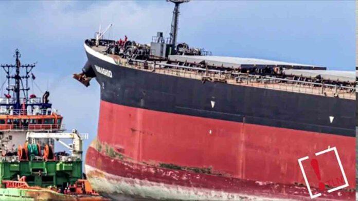 Desastre ecológico en la isla Mauricio por el derrame de petróleo de un barco