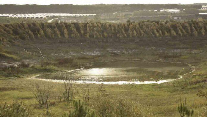 El Seprona investiga a 7 personas vinculadas al Espacio Natural de Doñana