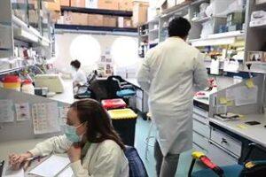 Llega al mercado el test de anticuerpos de COVID-19 del CSIC, con una fiabilidad de casi el 100%