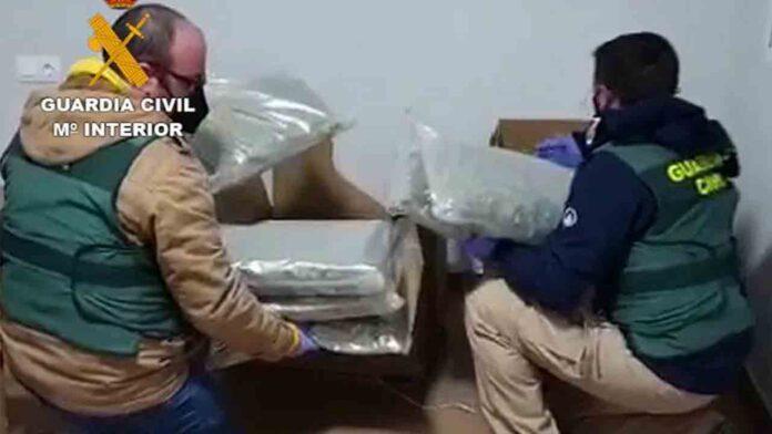 Detenidas 64 personas por distribución de marihuana en Europa