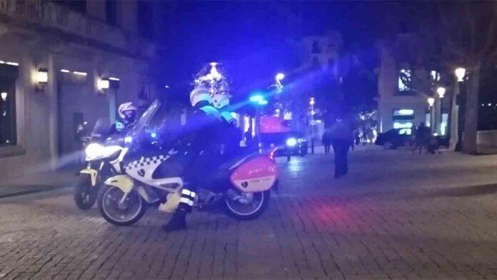 Detenido un hombre en Girona por dejar inconsciente a un perro