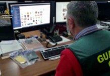 Detenidos dos pederastas que usaban los juegos online como gancho para contactar con los menores