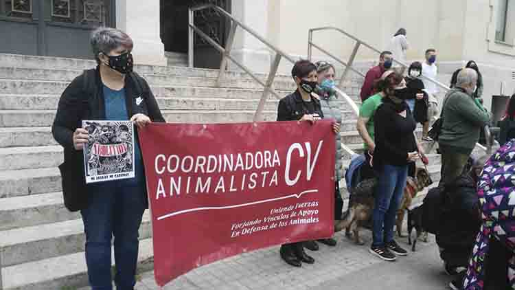 Manifestaciones en toda España para poner fin a la experimentación con animales