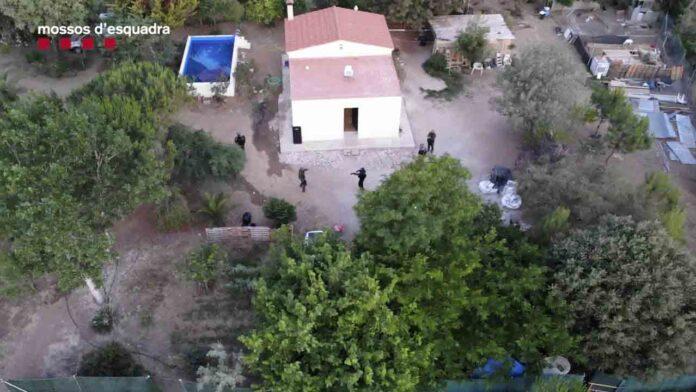 5 detenidos en Reus que gestionaban una plantación de marihuana armados