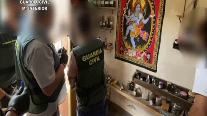Un matrimonio de Alicante hacía rituales con ayahuasca y escamas de sapo bufo