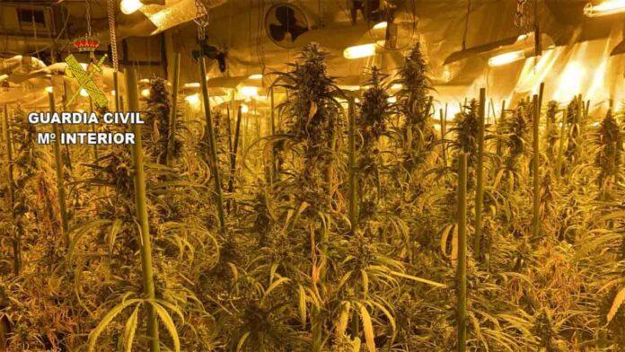 Macrooperación contra el tráfico de drogas en Toledo y Madrid
