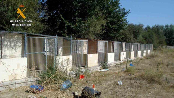 Dos detenidos por maltrato de perros en una residencia canina de Madrid